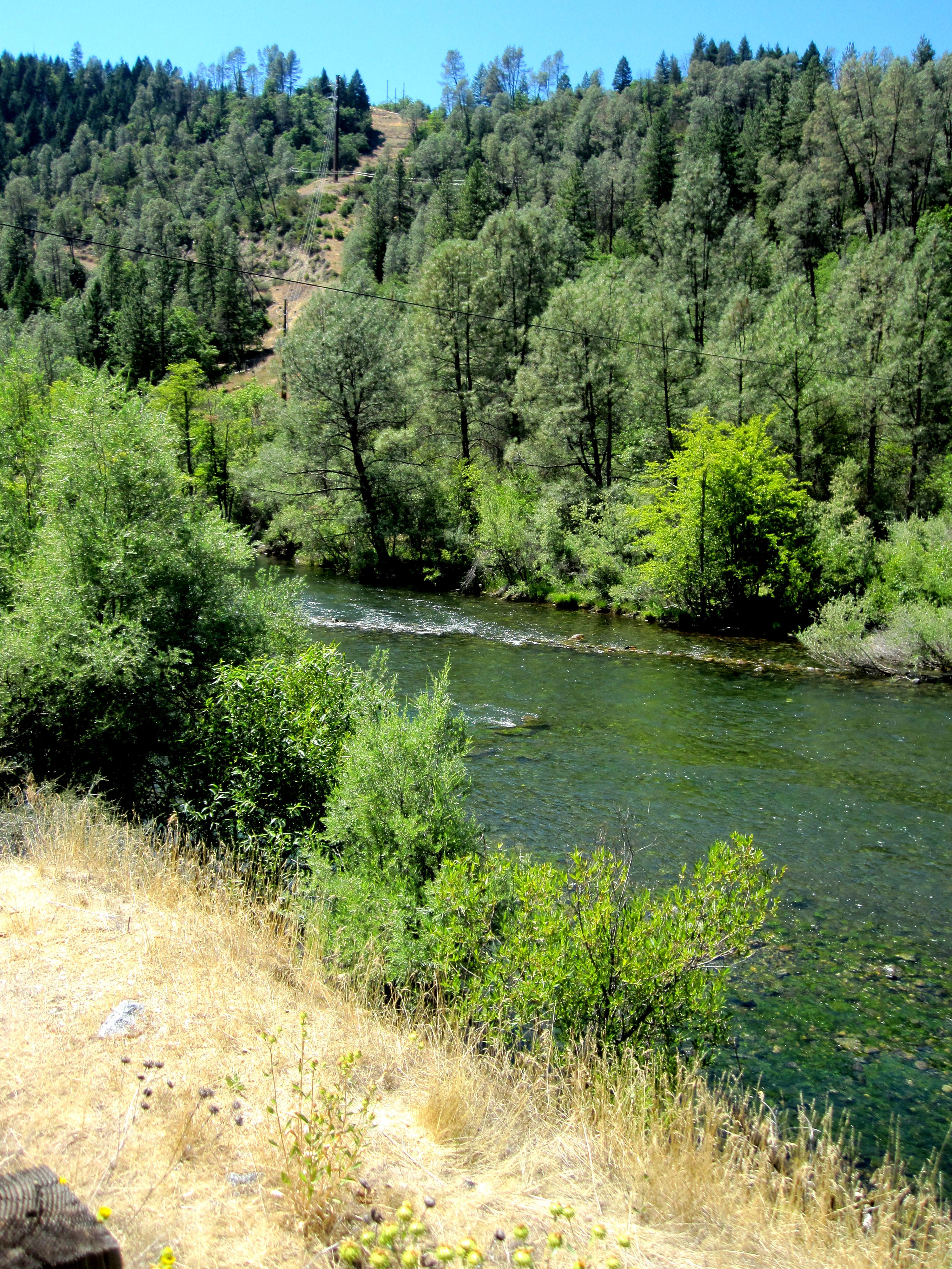 My roadtrip to redding ca with dad for Trinity river fishing spots